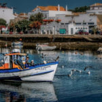 Yoga Retreat Portugal Fishing Village